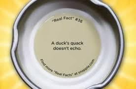 snapple fact1