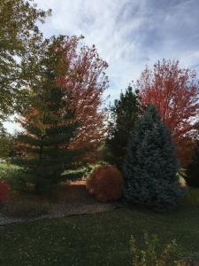 fall2016-13